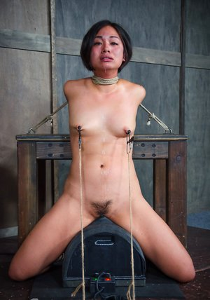 Japanese Sybian Orgasm Pics